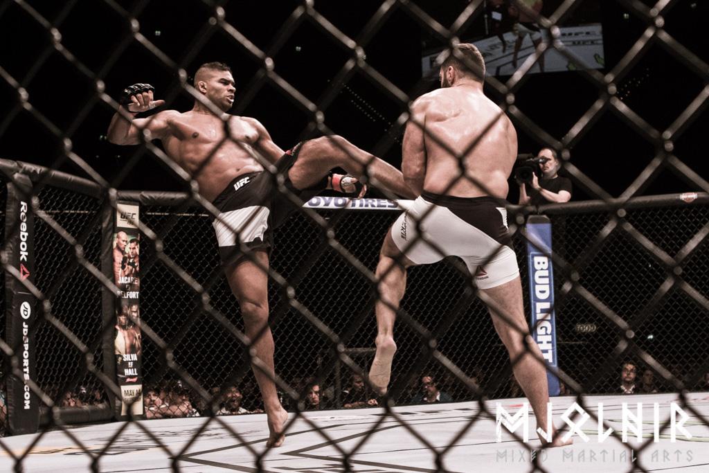UFC_Rotterdam_overeem