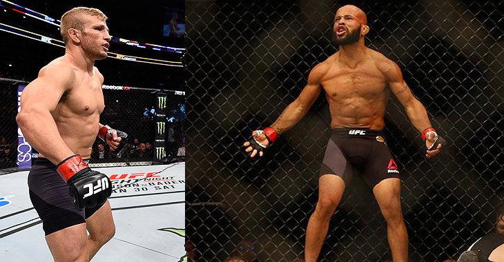 TJ-Dillashaw-Demetrious-Johnson
